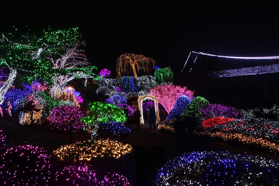 크리스마스 경기도 여행지 아침고요수목원 오색별빛정원전
