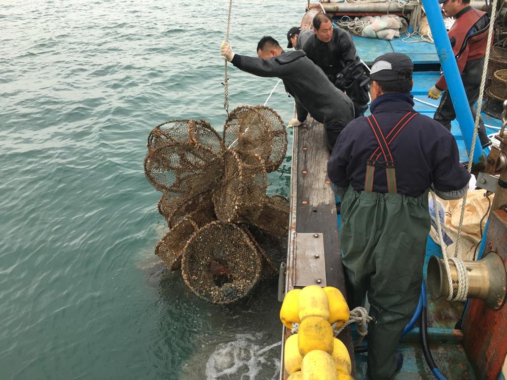 경기도해양수산자원연구소는 사고·질병 등으로 어려움을 겪는 도내 어업인들을 대상으로 '어업도우미 지원사업' 신청을 연중 접수한다고 22일 밝혔다.