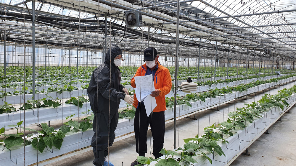4차 산업혁명시대가 도래하면서 농업 분야는 전통적인 농업 방식에 인공지능, 빅데이터 등 정보통신기술(ICT)을 활용해 자연환경에 영향을 받지 않고 자동으로 제어, 최적의 생육환경을 구현한 지능화된 실내 농업시설 '스마트팜'으로 변화하고 있다.