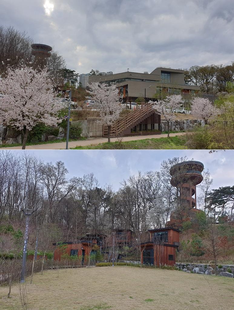 광교푸른숲도서관 전경(위), 푸른숲 책뜰(아래)