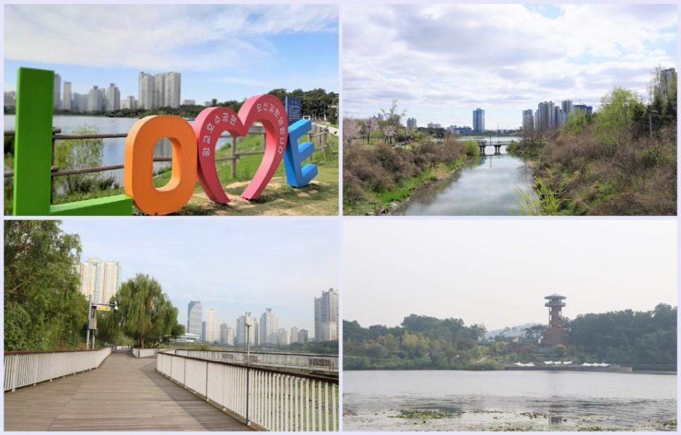 경관대상을 수상한 아름다운 광교호수공원 어반레비와 프라이부르크전망대!