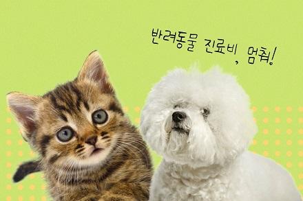 소중한 반려동물 의료비 걱정 끝! 돌봄 취약가구 반려동물 의료서비스 이미지